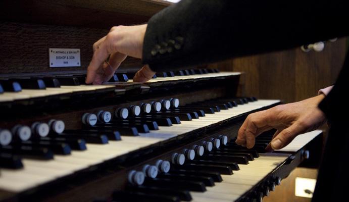 organista ritagliato
